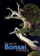 The best of Bonsai in Europe 3