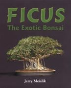Ficus - The Exotic Bonsai