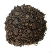 Special Soil for Garden Bonsai - 25 litres