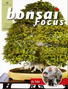 Bonsai-Focus 96 Maerz/April 2019