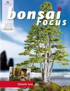 Bonsai-Focus 83 Januar/Februar 2017