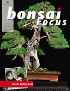 Bonsai-Focus 85 Mai/Juni 2017
