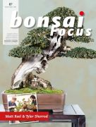 Bonsai-Focus 87 September/Oktober 2017