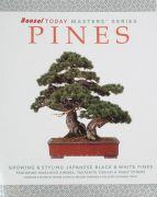 Pines - Bonsai Masters Series