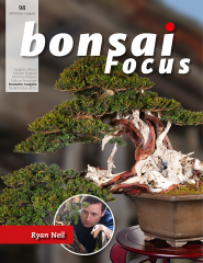 Bonsai-Focus 98 Juli/August 2019 - www.bonsai.de