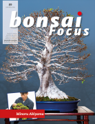 Bonsai-Focus 89 Januar/Februar 2018