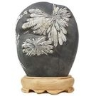 Chrysanthemum Stone - www.bonsai.de